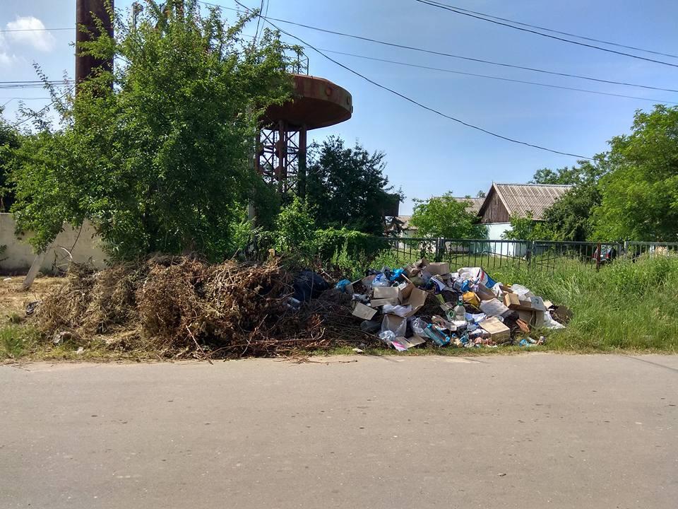 В курортном селе Килийского района глава РГА пригрозила вернуть выброшенный за пределы баз отдыха мусор владельцам