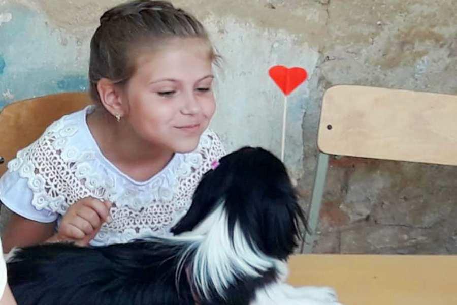 Собаки, хомяки и даже коза - в Килии провели первую любительскую выставку домашних животных