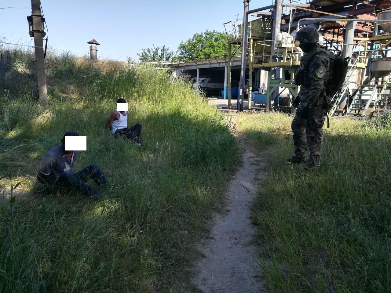 В Одесской области освободили из трудового рабства почти 30 человек, которых силой удерживали на консервном заводе