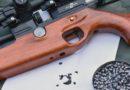 В Измаиле с балкона многоэтажки из пневматического оружия стреляли по детям