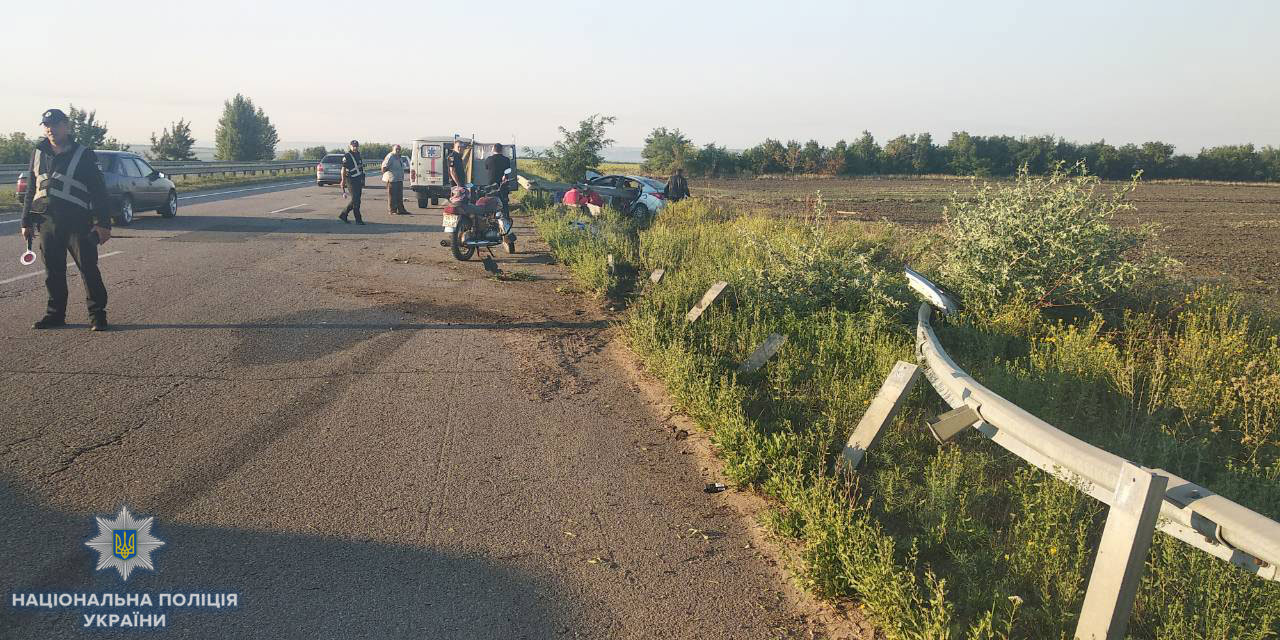 В Одесской области собака спровоцировала на трассе ДТП, в котором погиб ребенок (ФОТО)