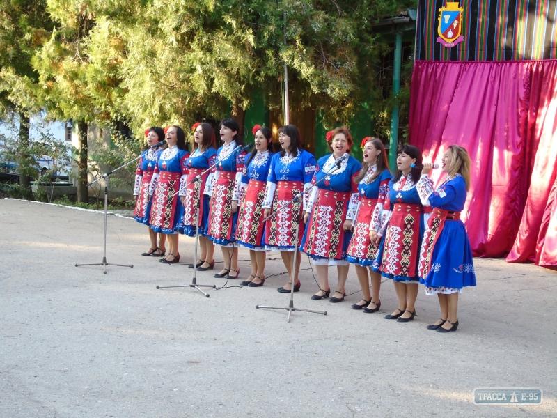 В самом маленьком селе Болградского района устроили большой фестиваль (ФОТО)