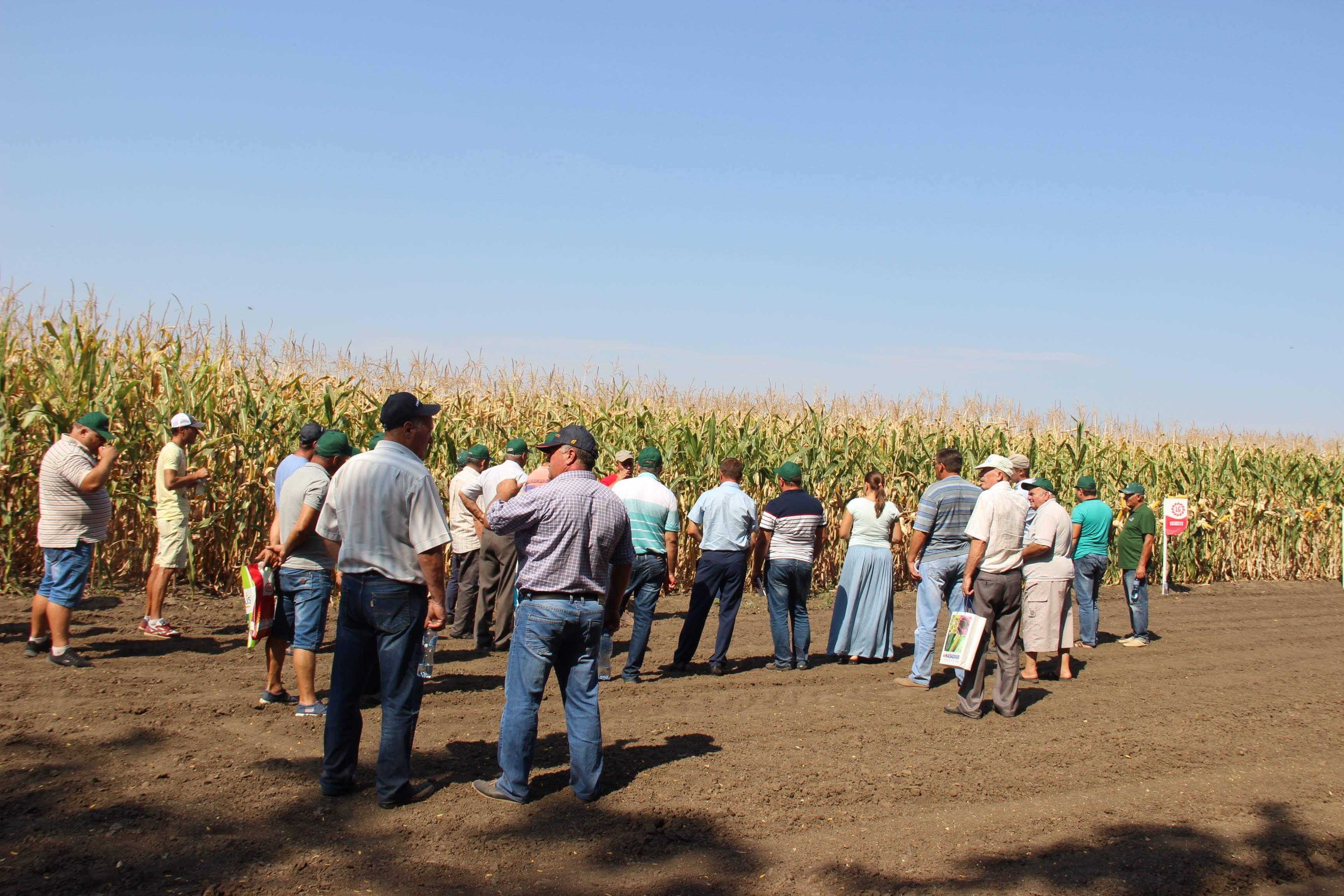 На знаменитой агрофирме в Арцизском районе всю область учили вести сельское хозяйство