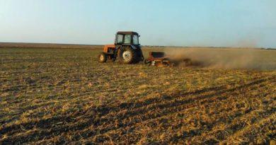 В Кабмине согласовали законопроект об отмене права украинцев на бесплатные 2 гектара земли