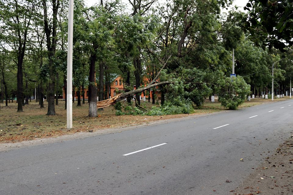 В Измаиле в результате непогоды повалено множество деревьев, которые повредили линии электропередач и перекрыли дороги