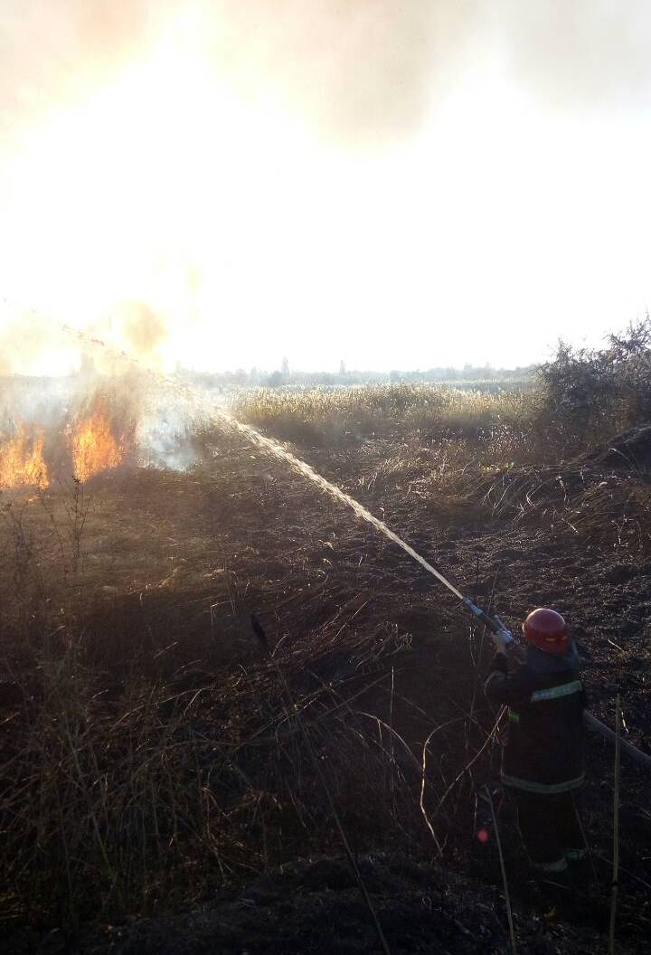 В Измаиле второй раз за месяц горел камыш возле Лебяжьего озера - огонь уничтожает большие площади