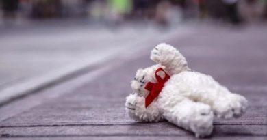 Татарбунарский район: в Белолесье под колесами микроавтобуса погиб годовалый ребенок