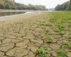 Главная река Европы или пустыня? Уровень Дуная в Венгрии упал до рекордного минимума — суда не ходят (ФОТО)