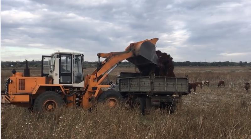 Вернули мусор хозяину: в Арцизе борьба со стихийными свалками вышла на новый уровень