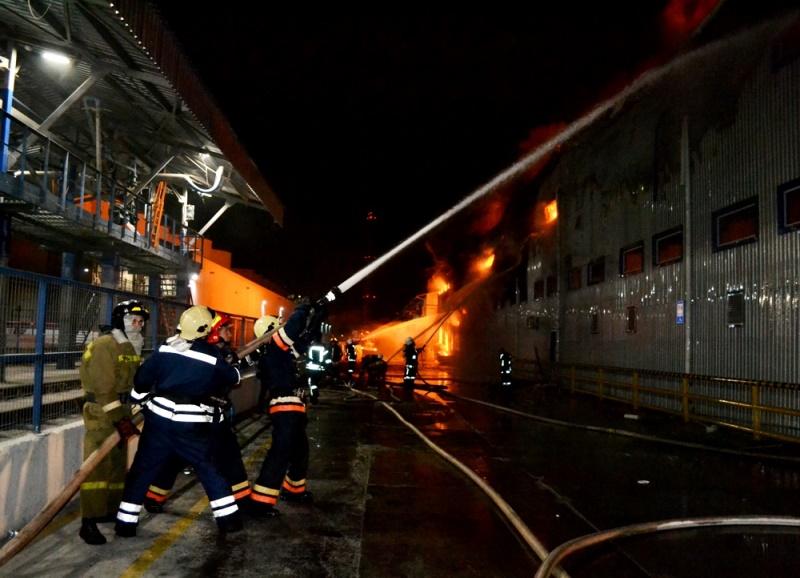 Масштабный пожар на маслозаводе под Одессой: 24 единицы пожарно-спасательной техники боролись с огнем на площади 1500 м²