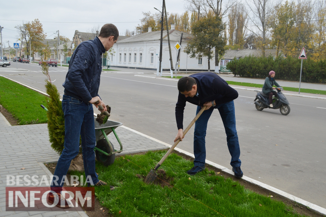 Зеленые новинки на главной улице Килии: мэр и депутат облсовета приняли участие в высадке декоративных растений