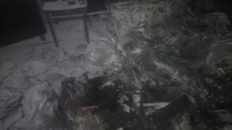 В Татарбунарском районе на пепелище обнаружили тело женщины (фото)