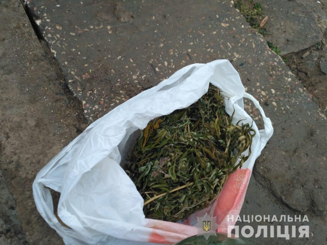 Выращивал и сушил для себя: у жителя Болградского района изъяли около килограмма марихуаны