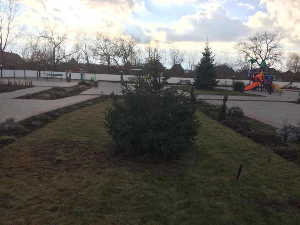 В центральном парке села Килийской ОТГ к Новому году появились три зеленые красавицы (фото)