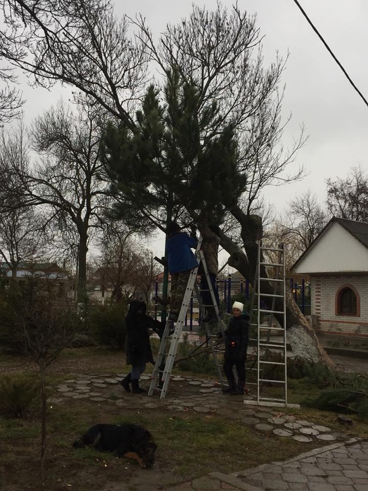 В Вилково горожане не довольны городской ёлкой и решили сами спасти ситуацию