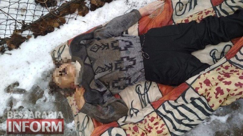 В Затоке на пожаре обнаружили тела мужчины и женщины (фото)