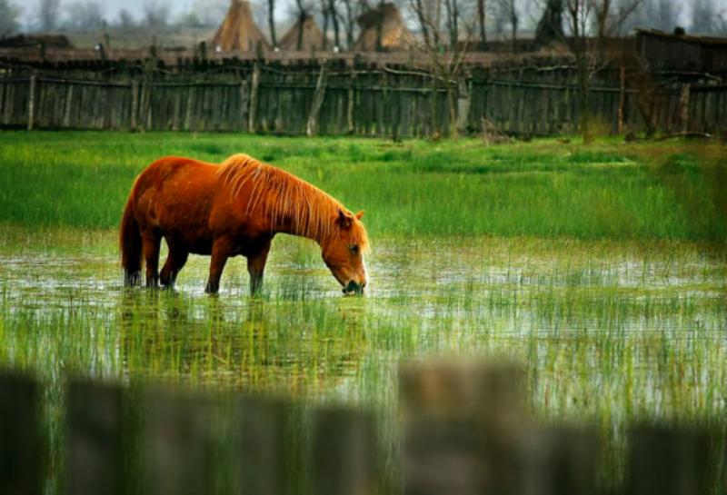Достижения соседей: туристические показатели соседствующего с Измаилом румынского уезда Тулча бьют рекорды