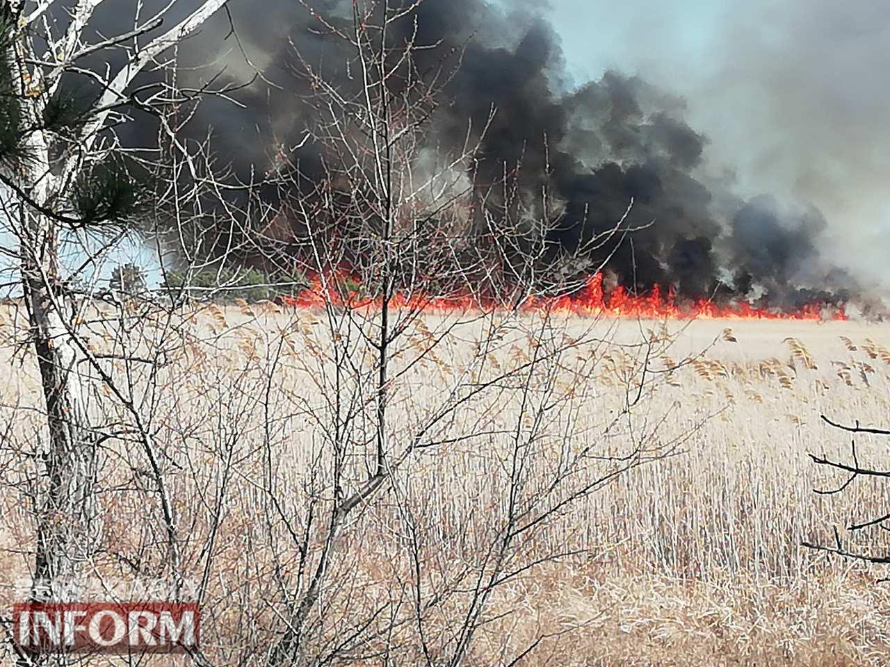 В Вилковском лесничестве разбушевался мощный пожар, к тушению которого привлечена авиация