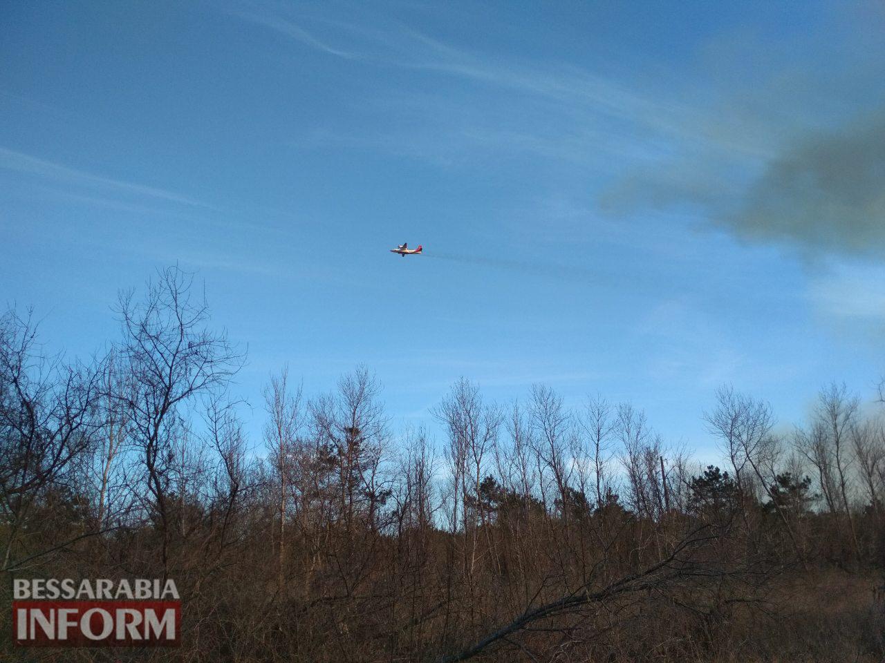 Из-за сильного задымления от пожара в Вилковском лесничестве полиция перекрыла автодорогу Т-1607