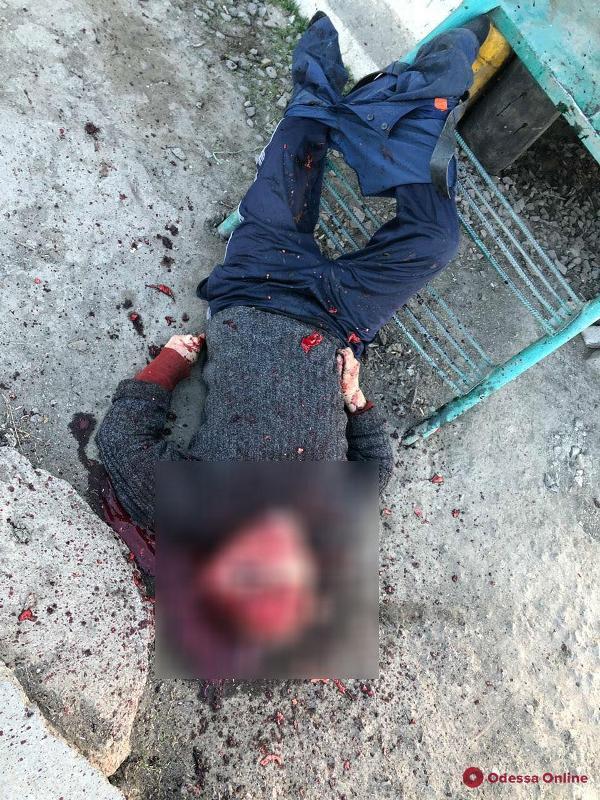 На городской свалке Измаила произошло жестокое убийство (фото 18+)