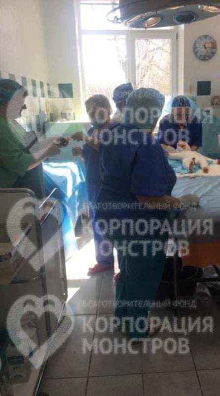 Мама малыша, упавшего в ведро с кипятком в Белгород-Днестровском районе, рассказала подробности инцидента