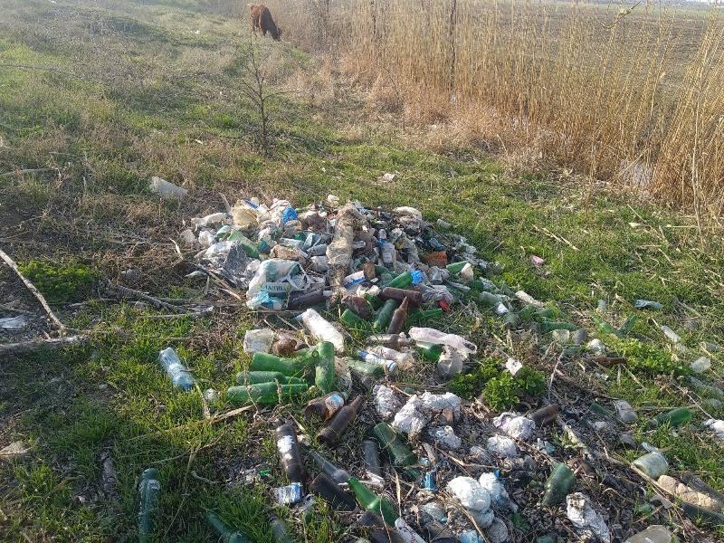 Активисты из Измаила поддержали акцию по уборке мусора, собрав его целый грузовик