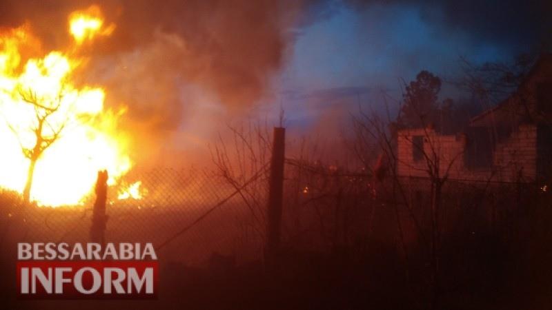 В Белгород-Днестровском пламя от пылающих камышей едва не добралось до жилых домов