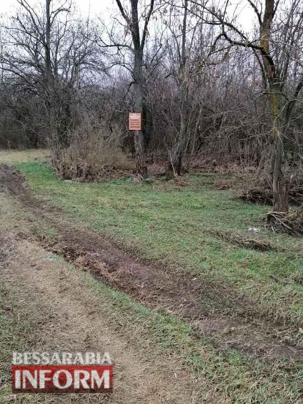 Белгород-Днестровский район: в лесопосадке вблизи села Монаши были обнаружены бронебойные снаряды