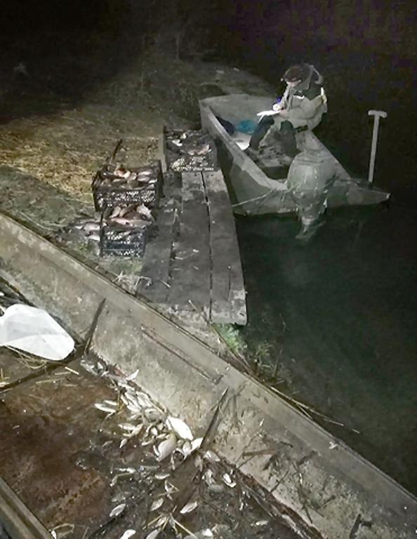 Белгород-Днестровские пограничники задержали браконьера, поймавшего почти полтысячи рыб на 30 тысяч гривен