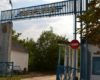 В Болградском районе на берегу озера Ялпуг этим летом снова заработает детский оздоровительный лагерь