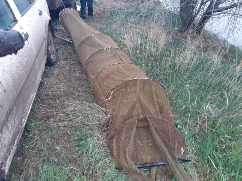 В Татарбунарском районе были задержаны браконьеры с уловом на 24 тысячи гривен