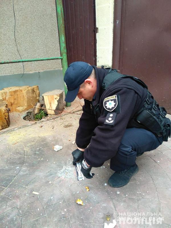 Во дворе частного дома в Рени взорвалась граната