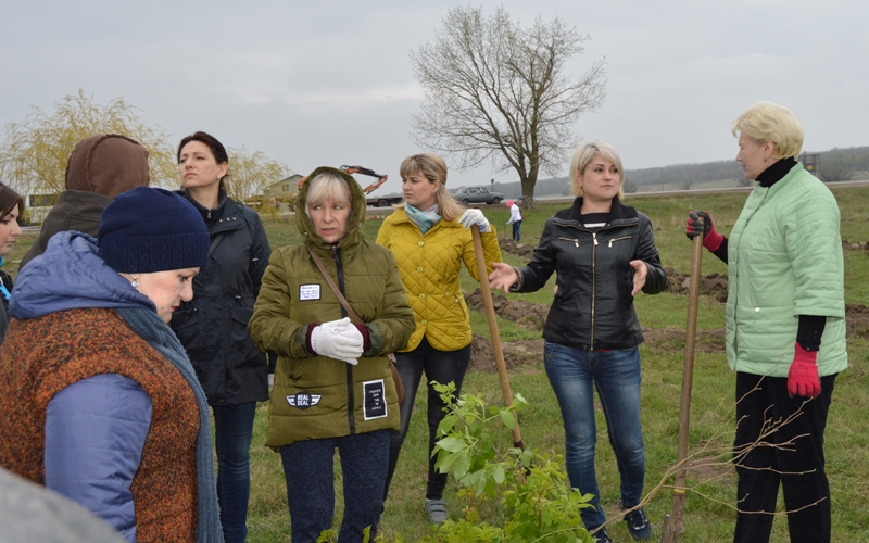 Чиновники Белгород-Днестровского района озеленяли территорию въезда в село Монаши