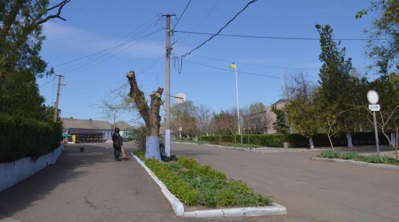 В Татарбунарах коммунальщики продолжают варварски обрезать деревья