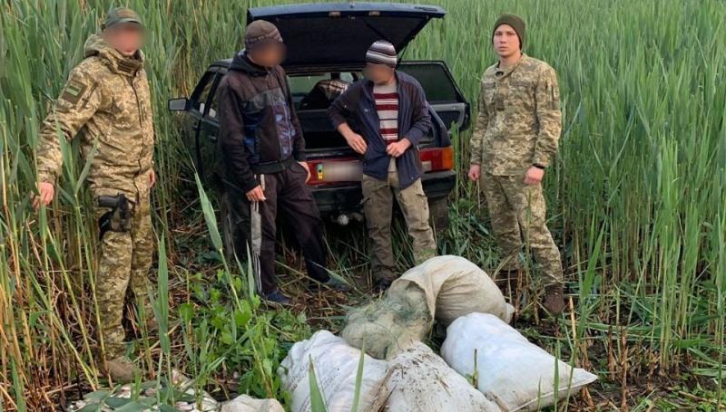 На озере Кагул задержали браконьеров из Украины и Молдовы, которые сетями ловили рыбу