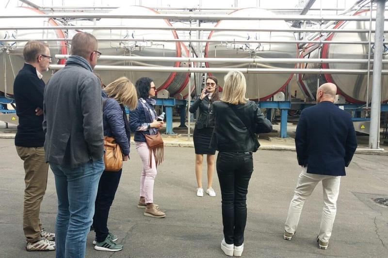 В Белгород-Днестровском проведен промо-тур для туристических операторов Дании