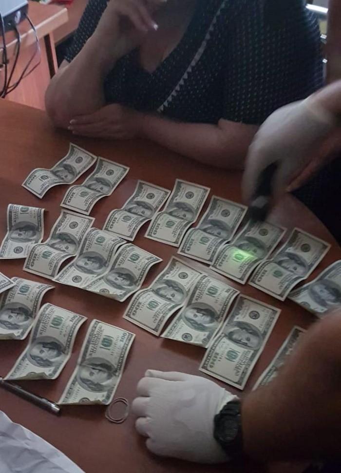 Председатель сельсовета в Саратском районе вымогала у предпринимателя 10 тыс у.е