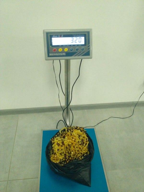 """В пункте пропуска """"Паланка"""" пограничники обнаружили более 3 кг незарегистрированного янтаря в багаже у иностранца"""