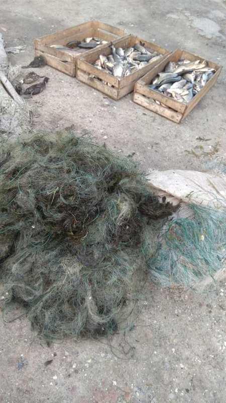 На озере Ялпуг был задержан браконьер с 20 сетями и почти 40-килограммовым уловом