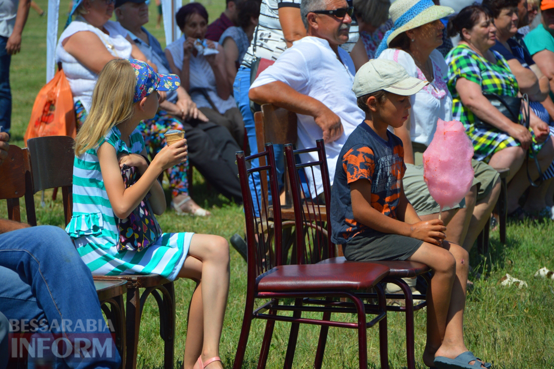 Клубничная столица Украины - село Лески - с размахом отпраздновала День села и окончание посевной