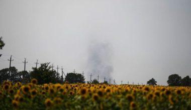 Подсолнухи и память: как сейчас выглядит место падения и мемориал MH17