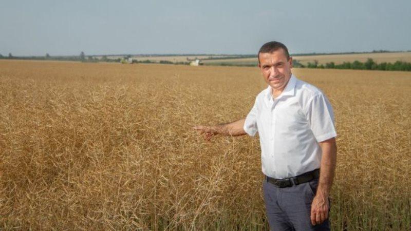 Банкрот: село Плахтеевка Саратского района может остаться без базового хозяйства