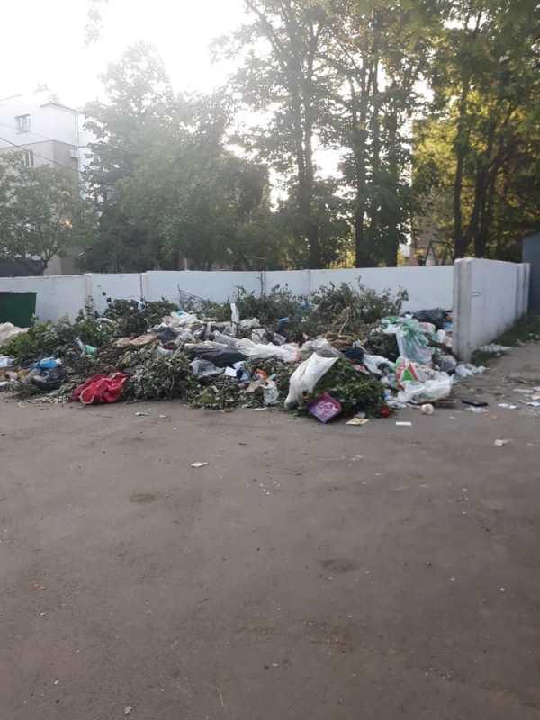 Измаил на пороге экологической беды: в городе двор многоэтажного дома превратили в свалку, которую сотрудники ЖКХ игнорируют