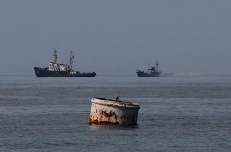 Дельфины и кит среди пластика и антибиотиков: насколько грязное Черное море?