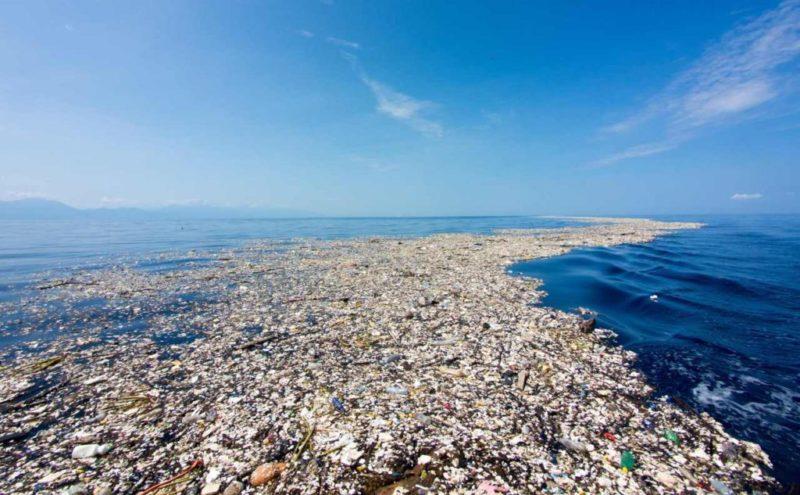Эколог Алексей Хобот о мусорных островах в Черном море