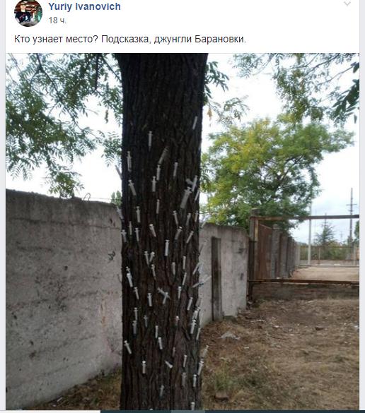 """Ужасы нашего городка - """"джунгли Барановки"""": скрытый антинаркомеседж для полиции Измаила? (фотофакт)"""