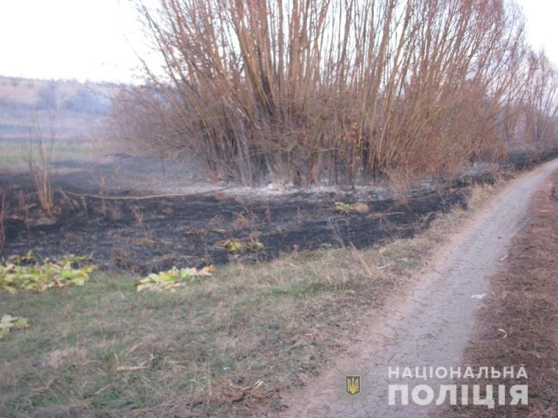 В Одесской области из-за сжигания опавших листьев и сухой травы сгорел дом и чуть не пострадал скот
