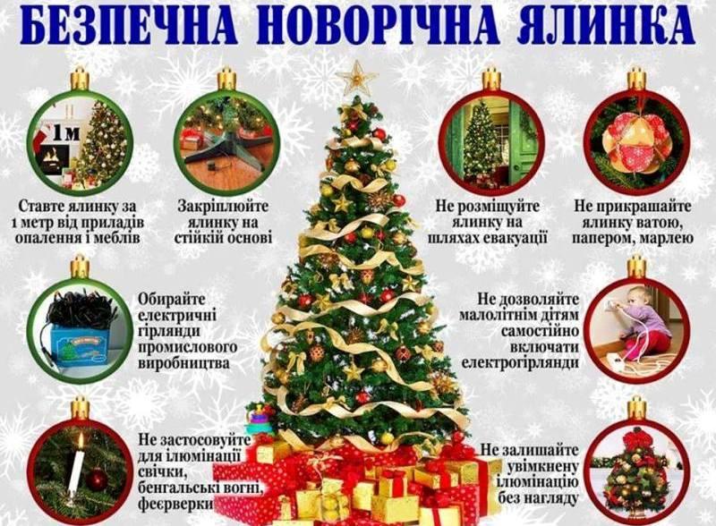 Безопасная новогодняя елка: спасатели рассказали о правилах празднования
