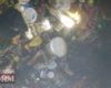 Загоревшиеся в частном доме горы мусора привели к смерти жителя Белгород-Днестровского района