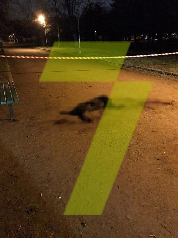 В Одессе домашний ротвейлер во время прогулки в парке чуть не загрыз свою хозяйку